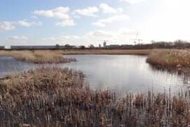 Crossness nature reserve